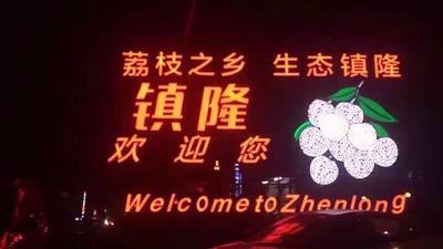 广东省惠州市惠阳区糯米糍荔枝 2cm