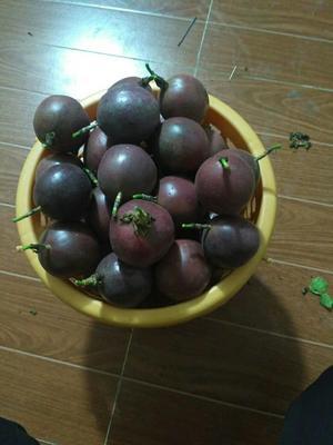 福建省漳州市龙文区百香果酱