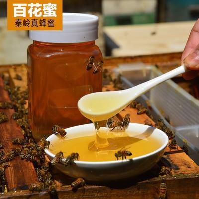 陕西省渭南市临渭区土蜂蜜 玻璃瓶装 100% 2年