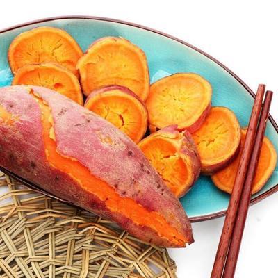 陕西省渭南市临渭区黑池北雷红薯 红皮 1~3两