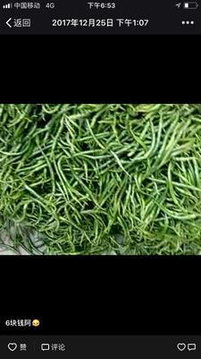 广西壮族自治区北海市合浦县线椒 10~15cm 靑色 中辣