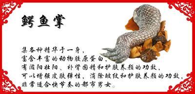 云南省丽江市古城区野生鲍鱼 人工殖养