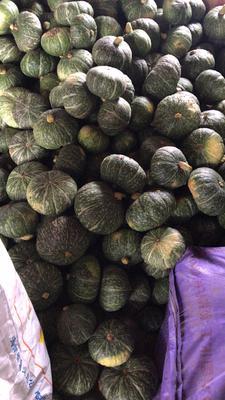 这是一张关于板栗南瓜 2~4斤 扁圆形的产品图片