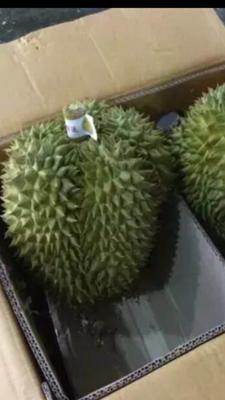 广西壮族自治区崇左市凭祥市泰国甲仑榴莲 90%以上 2 - 3公斤