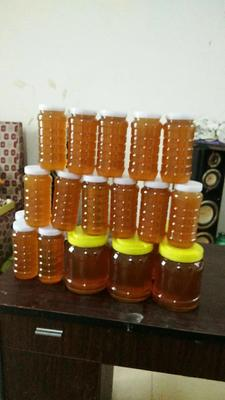 这是一张关于荔枝蜜 塑料瓶装 100% 2年以上的产品图片