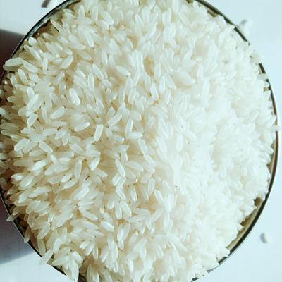 黑龙江省哈尔滨市五常市稻花香大米 有机大米 早稻 一等品