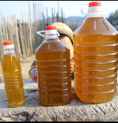 这是一张关于野生山茶油 2L的产品图片