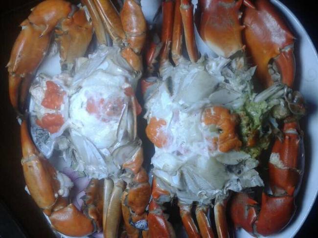 青蟹 6.0两 公蟹