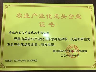 安徽省合肥市瑶海区霍山黄芽 散装 二级