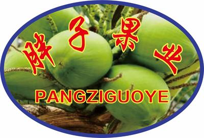 广西壮族自治区崇左市凭祥市椰青 2.5 - 3斤