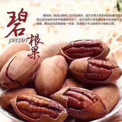 浙江省杭州市临安市碧根果 6-12个月 包装