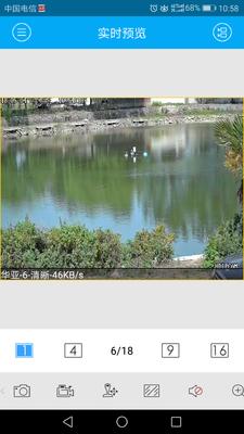 江苏省徐州市铜山区池塘鳊鱼 人工养殖 1-1.5公斤