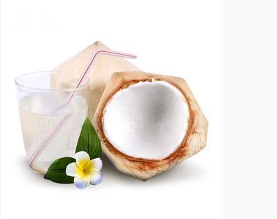 广东省广州市白云区泰国青椰子 1.5 - 2斤