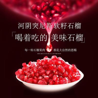 河南省郑州市荥阳市突尼斯软籽石榴 0.8 - 1斤