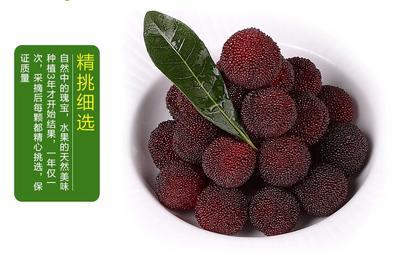 浙江省台州市仙居县仙居杨梅 2 - 2.5cm