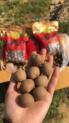 福建省福州市台江区带壳桂圆 袋装 一等 带壳
