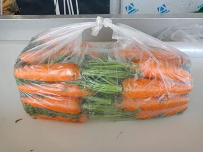 云南省大理白族自治州大理市三红胡萝卜 15cm以上 2两以上 3~4cm