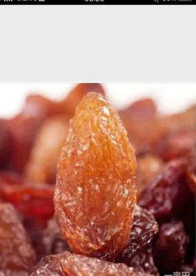 新疆维吾尔自治区吐鲁番地区吐鲁番市红香妃葡萄干 二等
