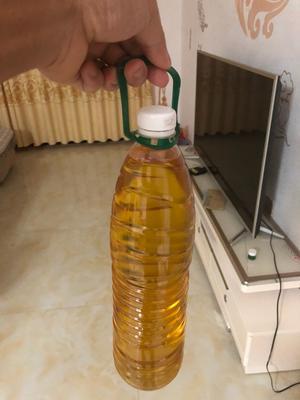 广西壮族自治区玉林市北流市压榨花生油