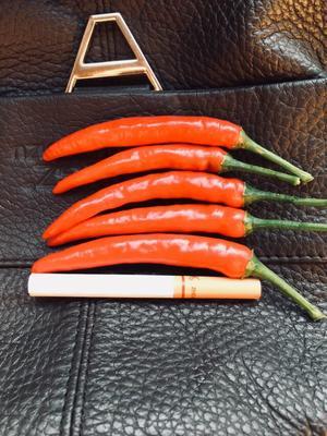 广西壮族自治区来宾市兴宾区指天椒 5~10cm 红色 特辣