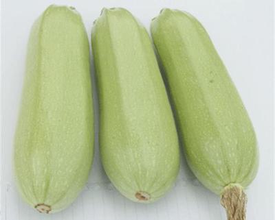 山西省晋中市榆次区绿皮西葫芦 0.8~1斤