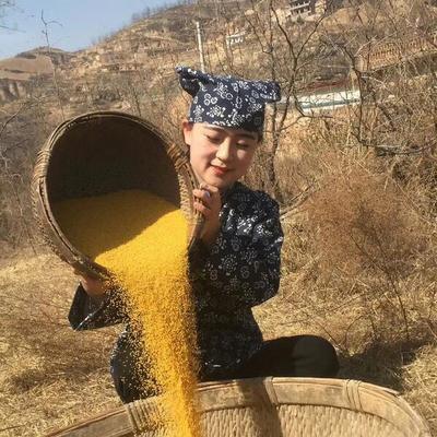 陕西省西安市户县米脂小米
