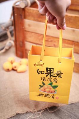 广西壮族自治区桂林市雁山区枇杷膏 3-6个月