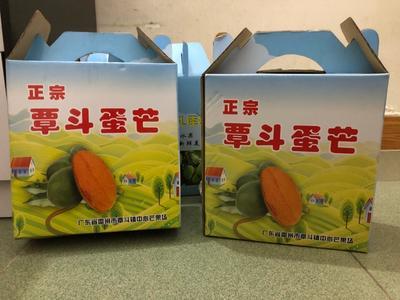 广东省湛江市雷州市鸡蛋芒 4两以上