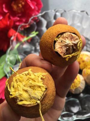 广西壮族自治区桂林市雁山区柠檬菊