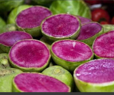 河北省唐山市丰润区心里美萝卜 1.5~2斤