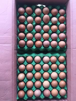 云南省昆明市官渡区土鸡蛋 食用 箱装