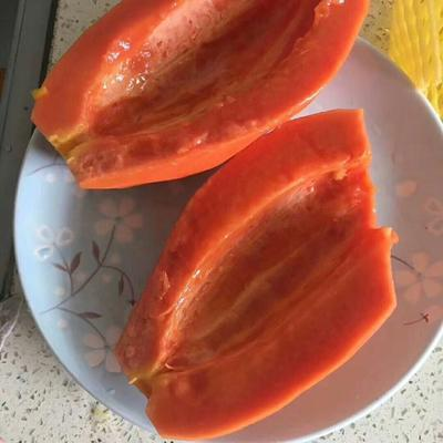 广东省广州市越秀区红心木瓜 2 - 2.5斤