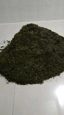 广西壮族自治区百色市隆林各族自治县金银花