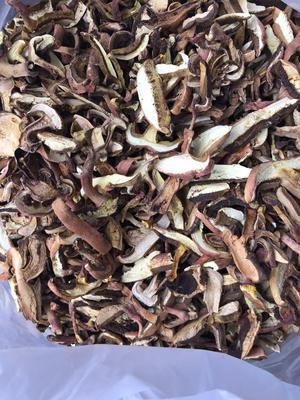 云南省普洱市镇沅彝族哈尼族拉祜族自治县红葱菌 1.0% 一级