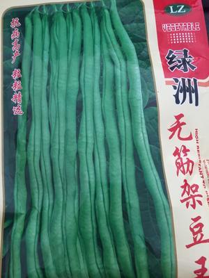 山东省潍坊市寿光市豆角种子 ≥80%