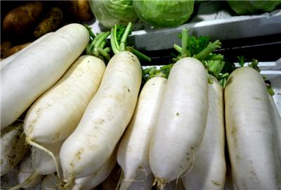内蒙古自治区通辽市科尔沁左翼中旗白萝卜 4斤以上