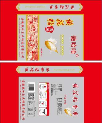 安徽省六安市霍邱县黄花粘大米 绿色食品 中稻 一等品