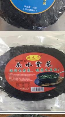 福建省泉州市丰泽区头水紫菜