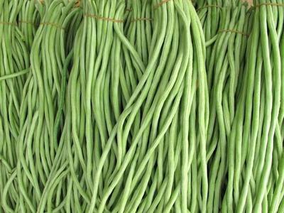 湖南省长沙市浏阳市长豇豆 30cm以上 不打冷