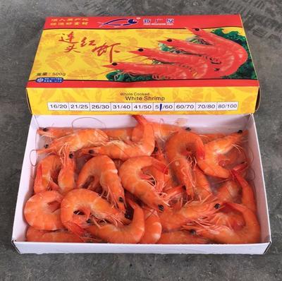 陕西省西安市碑林区冻虾