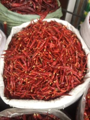 这是一张关于印度干辣椒的产品图片