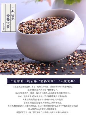 山西省忻州市繁峙县三色藜麦