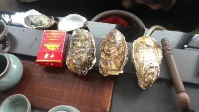 这是一张关于乳山牡蛎 人工殖养 4-5两/只 的产品图片