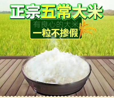 黑龙江省哈尔滨市五常市稻花香二号大米 有机大米 晚稻 一等品