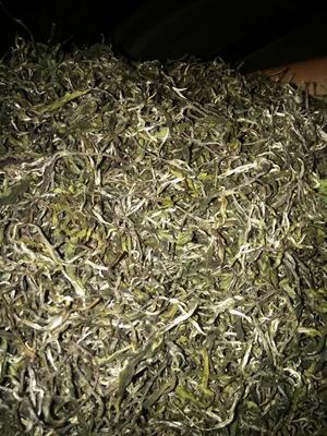 北京大兴区云南绿茶 散装 特级