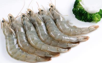 江苏省徐州市泉山区南美对虾 人工殖养 3-5钱
