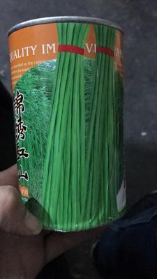 四川省成都市新都区豆角种子 ≥98%