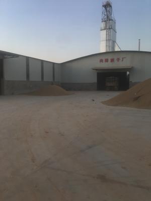 这是一张关于粳稻谷 早稻的产品图片