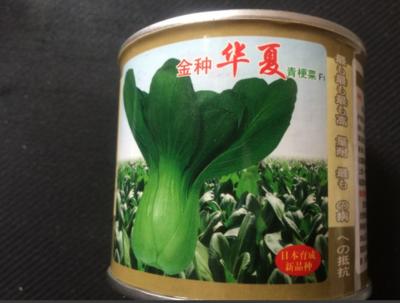 上海闵行区青梗菜种子