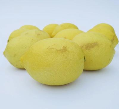 上海普陀区安岳柠檬 1.6 - 2两